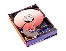 Western Digital Caviar WD800JD 80 GB SATA II Hard Drive - 7200 RPM