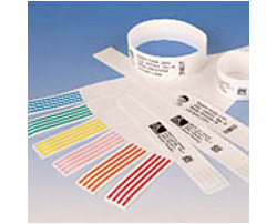 Zebra Z-Band 10007746K-CASE Direct Soft Infant Wristband Label - 6-Pack - White