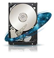 Seagate Constellation ES ST31000424SS 1 TB Internal Hard Drive - 3.5-inch -7200 RPM - 6 GBps SAS - 16 MB Cache