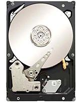 Seagate Constellation ST1000NM0001 1 TB Internal Hard Drive - 7200 RPM - SAS 6 Gbps - 64 MB Cache