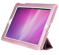 Hornettek L'etoile IP3HSLPN Hairline Case for iPad - Hot Pink