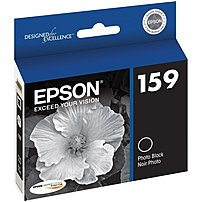 Epson T159120 159 Print Cartridge For Stylus Photo R2000 - Inkjet - Photo Black
