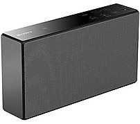 Sony Srs-x5kit Wireless Portable Speaker With Case - Black
