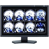 "Nec Monitor Multisync Md242c2 24"" Led Lcd Monitor - 16:10 - 8 Ms - Adjustable Monitor Angle - 1920 X 1200 - 1024 Gray Levels - 350 Nit - 1,000:1 - Wuxga - Dvi - Hdmi - Vga - Monitorport - Usb - 39.50 W - Rohs, Weee, J-moss (japanese Rohs)"