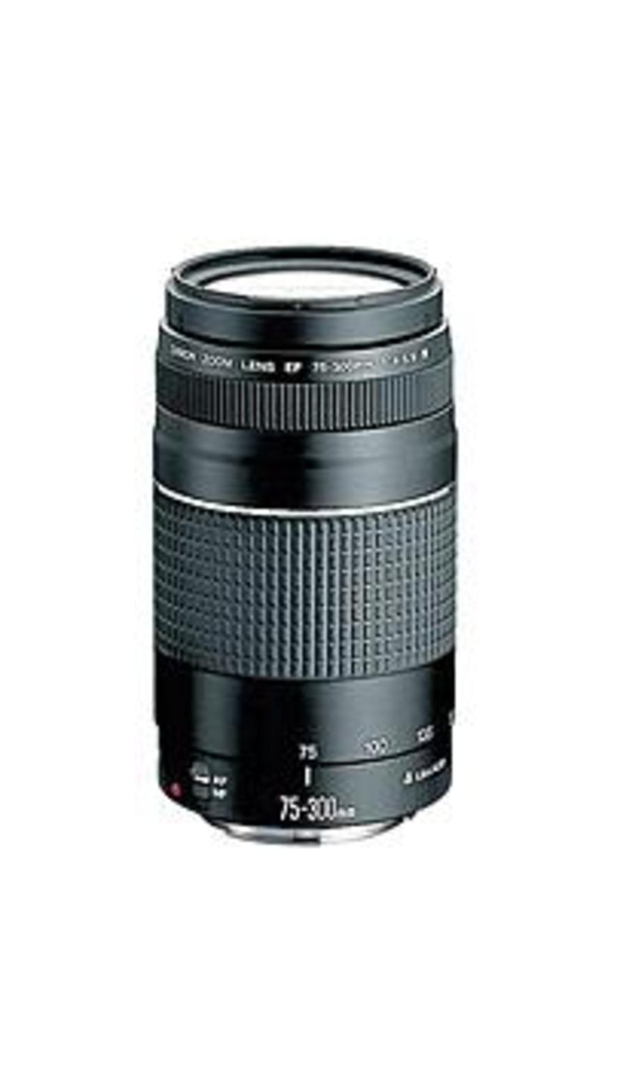 Canon 6473A003 EF 75-300mm f/4-5.6 III Lens Telephoto Zoom Lens