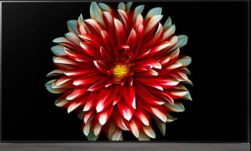 LG Electronics OLED65G7P 65-inch 4K UHD Smart OLED TV - 3840 x 2160 - HDMI/USB